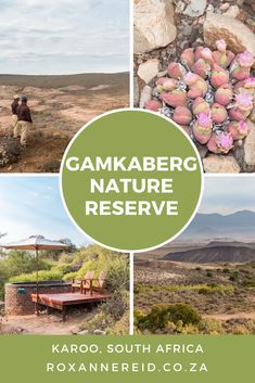 Fossil Ridge eco-lodge in the Gamkaberg: a perfect spot - Roxanne Reid All About Africa, Wildlife Safari, Slow Travel, Nature Reserve, Africa Travel, Virtual Tour, Travel Around, The Locals, Fossil