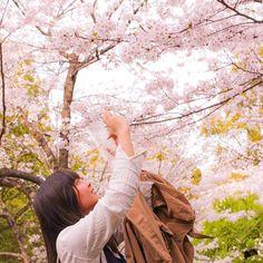 【lla15.ri】さんのInstagramをピンしています。 《. . 桜が咲く頃、笑えるように。 . . . . . 国試の勉強頑張らなくちゃなんだけど 今のとこ合格できそうな気配が全く ないんだけど、、。(笑) まあ、これからかな? . でも作業療法士になりたいから 頑張るしかない、、。 . . . . #camera #canon #eoskissx7  #eos #picture #photo @pic #happy #day #friend #spring  #saga #instagood #instamood  #一眼 #カメラ #一眼レフ #写真 #桜 #春 #佐賀 #小城 #小城公園 #ポートレート #ポートレート部  #写真好きな人と繋がりたい  #カメラ好きな人と繋がりたい  #ファインダー越しの私の世界 . .》