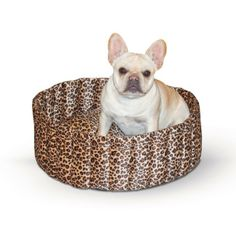 Lazy Cup Pet Bed $31.95 from RadioFence.com  #dogbed #catbed #cats #dogs #radiofence (http://www.radiofence.com/lazy-cup-pet-bed-large/)