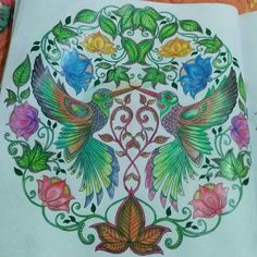 Jardín secreto colibríes