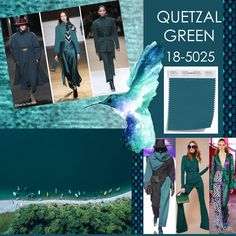 A/W 2019 QUETZAL GREEN, 18-5025 Fashion Colours, Colorful Fashion, Ny Fashion Week, Women's Fashion, Color Me Beautiful, Color Stories, Alberta Ferretti, Color Of The Year, Pantone Color