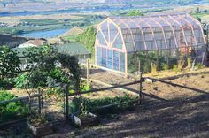 How to Build a Greenhouse and What it Cost Us by Shaye from the Elliot Homestead