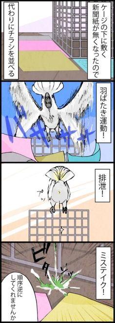 漫画「いたずらオウムの生活雑記」 (100) ミステイク | ライフスタイル | マイナビニュース