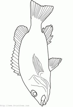 Fish Template | Fish Outline Template