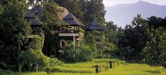 Dream vacay. Glamping at the Four Seasons Golden Triangle in Thailand. #glamping