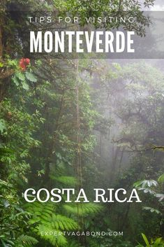 Tips for visiting Monteverde in Costa Rica. More at ExpertVagabond.com #Monteverde #CostaRica #Travel