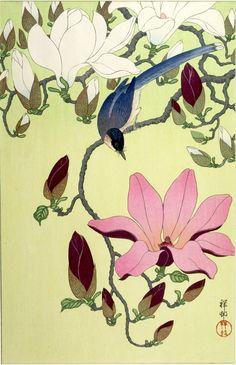 Ohara Koson 小原 古邨 (1877-1945) Like & Repin. Noelito Flow. Noel Panda http://www.instagram.com/noelitoflow
