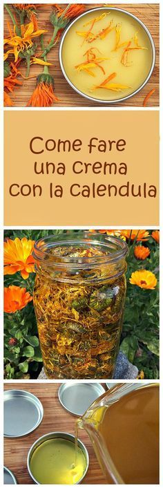 Natural Remedies How to make a healing calendula salve. It's easier than you might think! - How to make a healing calendula salve, great for all kinds of skin issues. I wrote this post for the Herbal Academy and I wanted to share it with you! Healing Herbs, Natural Healing, Holistic Healing, Wound Healing, Medicinal Herbs, Natural Health Remedies, Herbal Remedies, Cold Remedies, Natural Medicine