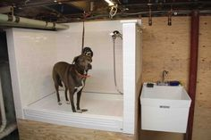 How To Build A Dog Wash Station - DIY                                                                                                                                                                                 More