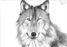 ulv revidert - Kopi