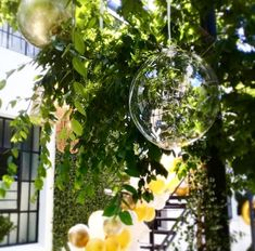 Cape Town Balloon & Event Company are a flexible and dynamic company specializing in social and corporate events, Balloon wholesale, retail and instillations. Wholesale Balloons, Event Company, Cape Town, Fairy Lights, Corporate Events, Corporate Events Decor, Twinkle Lights