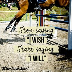 Weekday Motivation for the competition season!  Weekday Motivation for the competit Horse Love, Horse Girl, Crazy Horse, Inspirational Horse Quotes, Equestrian Quotes, Equine Quotes, Horse Riding Quotes, Country Quotes, Country Life