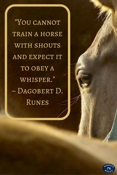 """You cannot train a horse with shouts and expect it to obey a whisper."""