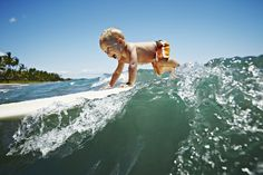 """Whether they're riding waves all on their own (""""Look ma, no hands!""""), getting an extra push from dad or are just practicing their pop up on the sand, these surfer tots will certainly bring a smile to your face."""