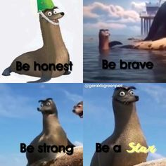 most inspiring thing ive seen all year Finding Gerald, Funny Pictures With Words, Funny Seals, Bae, Finding Dory, Earthship, I Love To Laugh, Cute Disney, Spirit Animal