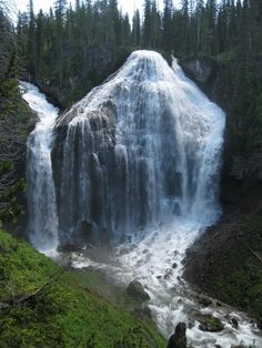 Union Falls At Yellowstone.