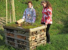Čo dokáže naučiť záhrada? | Živica - Inšpirujeme k zmene
