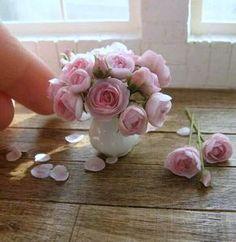 miniature roses Mais