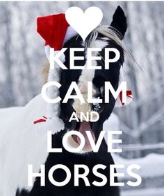 Keep calm and ❤ horses.