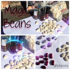 Magic beans (butter beans coated in nail varnish) Ready for our Jack and the beanstalk week.