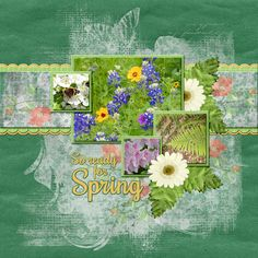 Lovely flowers!  Discovering Spring is a fun and beautiful digital scrapbook collection.  It has loads of watercolor texture, and some adorable whimsy for creating sweet scrapbooking layout pages.  There are lots of flowers and birdies to cluster up around your precious family photos.