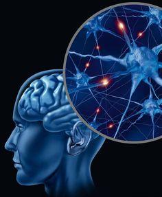 """Neustála intelektuálna práca počas života nám pomáha dlhšie uchovať práceschopnosť aspomaliť starnutie. Popredná vedecká pracovníčka Laboratória fyziológie Vedeckého neurologického centra Ruskej akadémie vied Dr. Natália Ponomareva hovorí: """"Každý vie, že svaly je nutné zaťažovať, … Read More Michigan"""