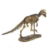 Show details for Trex Dinosaur Skeleton Statue