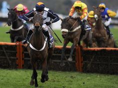 Saturday 2 Feb 2013 Horse Racing Tips Horse Racing Tips, Horses, Animals, Animales, Animaux, Animal, Animais, Horse