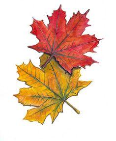 Fall/Thanksgiving Printables
