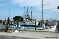 A staple of our visits to Southwest Florida is Tarpon Springs, near Tampa.  Get some Greek food, walk the docks, buy a sponge, and imagine a simpler time (before fighting the sprawl to get back on the Interstate....)