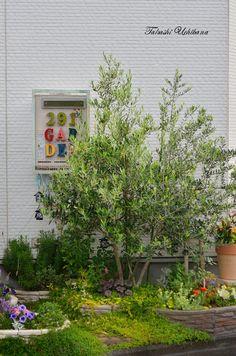 Olive オリーブ 291GARDEN 291ガーデン おウチで楽しむ