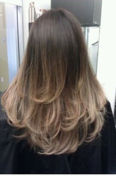 Smoked Titanium Ash Brown Ombre By Guy Tang Projects