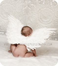 Cute little baby angel! I have been wanting to do something like this for forever!