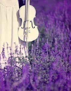 violin...for Kaley