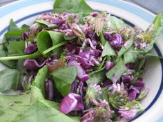 Dandelion spinach salad with red clover petals and red cabbage, delicious!