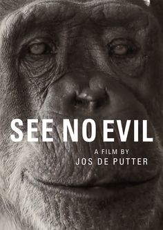 SEE NO EVIL (2014) - Jos de Putter