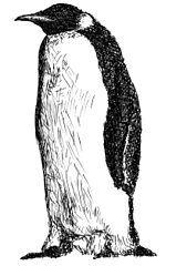 Image result for dessin transparent