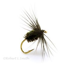 Black and Peacock Spider expertly dressed on top quality hooks, featuring the finest materials. Buy a range of traditional and modern spider patterns tied by the finest North Country Flydresser. Fly Tying Desk, Salmon Flies, Fly Tying Patterns, North Country, Spiders, Fly Fishing, Traditional, Sports, Spider