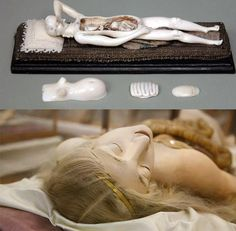 Anatomical Teaching Model of a Pregnant Woman by Stephan Zick (1639-1715) *and* Medical Venus (Wax Model) by Clemente Susini (1754-1815). Read below in the comments an excerpt from 'Wombs, Waxes, and Wonder Cabinets'....