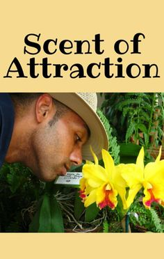 Could the way you smell determine who's attracted to you? The Doctors put the idea to the test. http://www.recapo.com/the-doctors/the-doctors-advice/the-drs-scent-attraction-are-you-addicted-to-traveling/