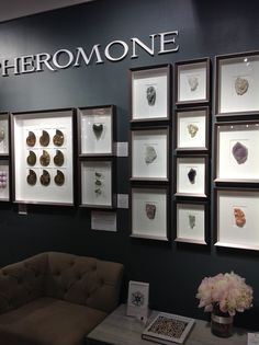 Pheromone is a new line Aidan Gray is carrying in their showroom. It's a wonderful collection of beautifully framed minerals, shells and but...