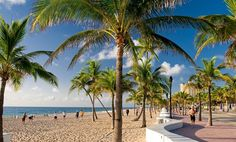Fort Lauderdale | Fort Lauderdale Tourism and Vacations: 189 Things to Do in Fort ...