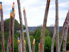 color pencil trees by Jonna Pohjalainen