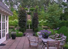 Beautiful Home and Garden  Fagus sylvatica 'Dawyck's Purple', columnar tree in formal elegant setting