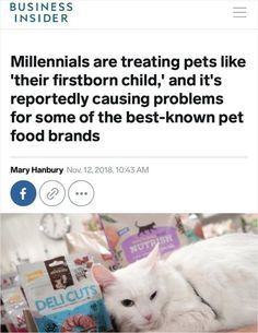 Millennials Are Chan Food Animals Pets Millennials