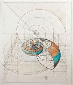 Rafael Araujo is raising funds for Golden Ratio Coloring Book on Kickstarter! A coloring book with a collection of Rafael Araujo's hand drawn Golden Ratio illustrations to reconnect with yourself and nature Pencil Drawings, Art Drawings, Abstract Drawings, Illustrations, Illustration Art, Inspiration Art, Grafik Design, Art Design, Design Ideas