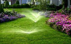 Planning a sprinkler system