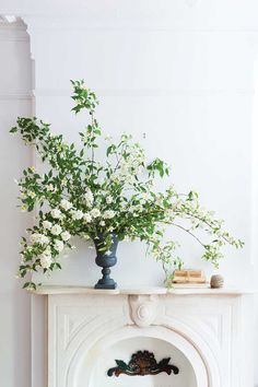 Billowing branches of mock orange in iron urn