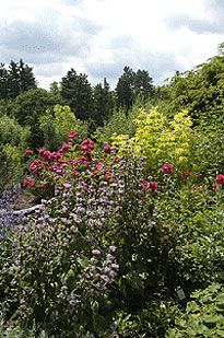 Cornell Plantations is an area of great natural beauty that includes an arboretum, a botanic garden, and natural areas--all of which are part of Cornell University.