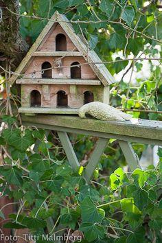 Love my birds <3